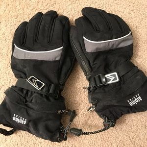Other - Alpine design ski gloves